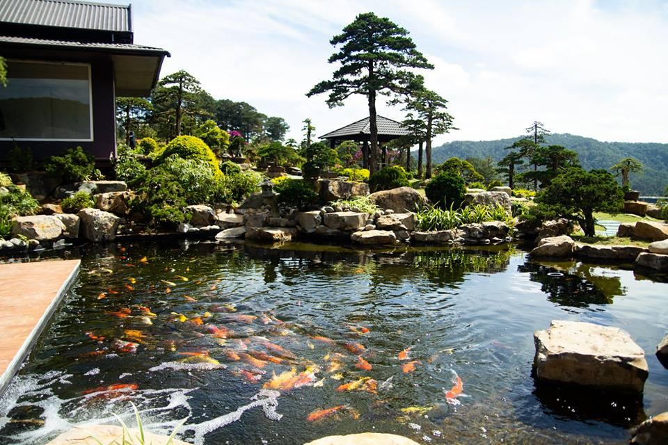 Que Garden điểm tham quan tuyệt vời cho du khách yêu thiên nhiên